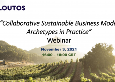 """Webinar on """"Collaborative Sustainable Business Model Archetypes in Practice"""""""
